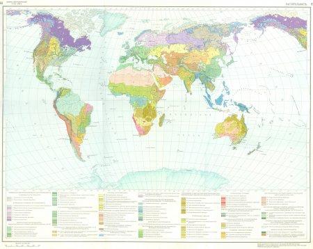 Мировая карта растительности