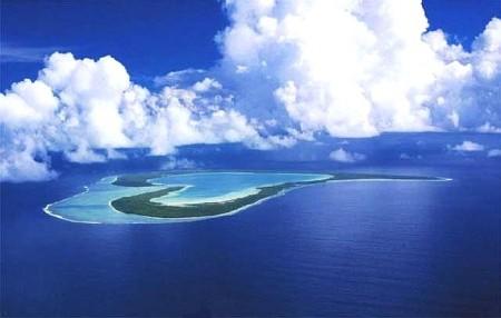 Экономический потенциал биологических ресурсов Мирового океана.