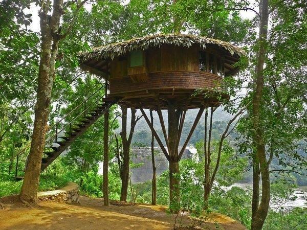 Невероятные дома на деревьях