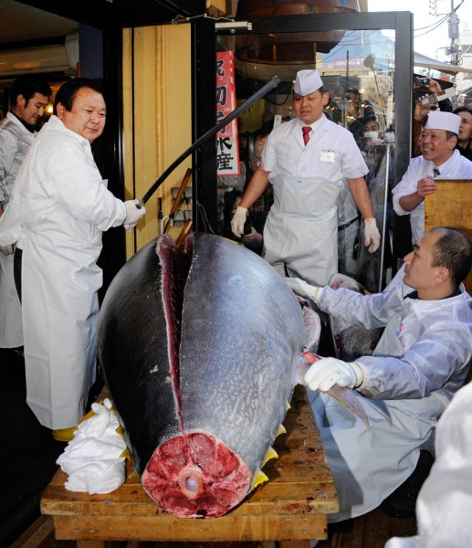 В Японии разделали гигансткого голубого тунца за 736 тысяч долларов