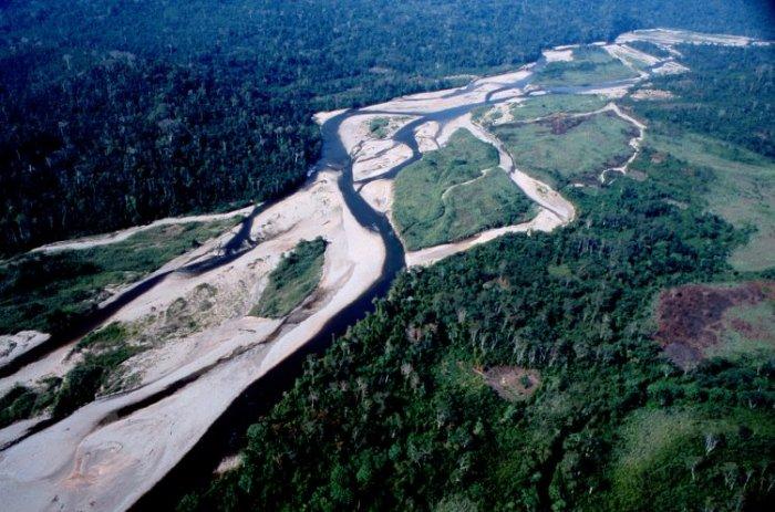 Борьба на выживание индейцев Ашанинка