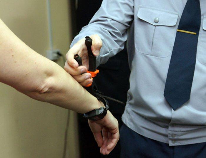 Применение электронного мониторинга при исполнении домашнего ареста в Венгрии
