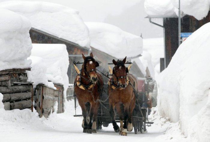 Суровая зима 2012