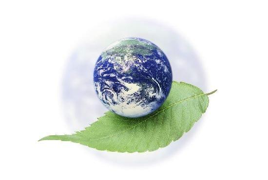 Защита окружающей среды: налоги или разрешения на загрязнение?