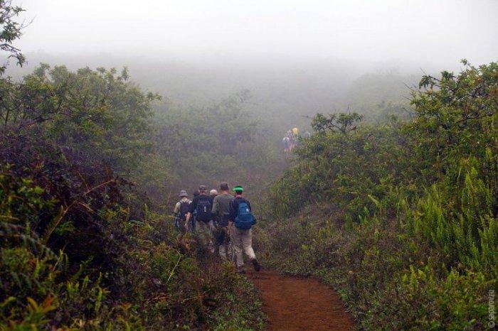 Путешествие на Галапагосские острова