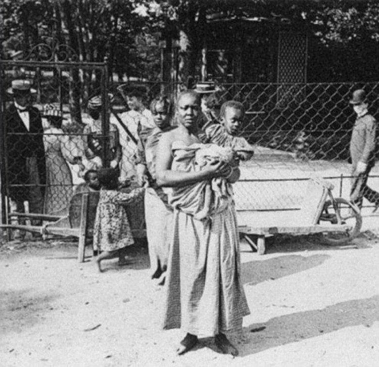 Негритянка села на лицо 9 фотография