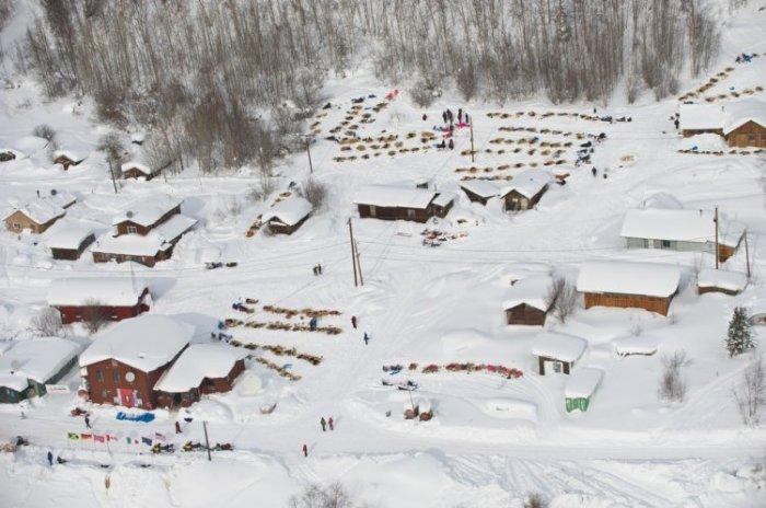 Идитарод 2012