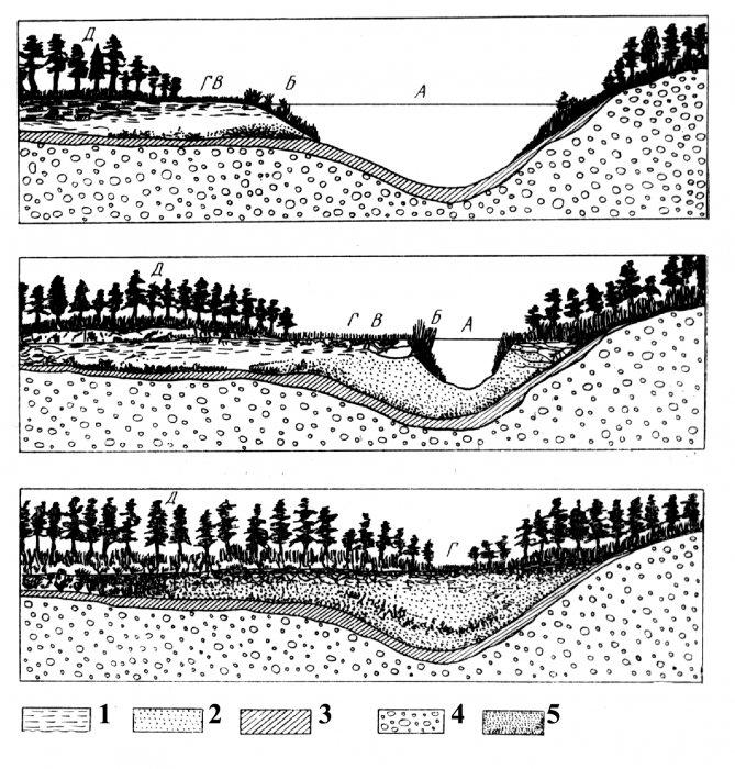 Геологическая деятельность болот