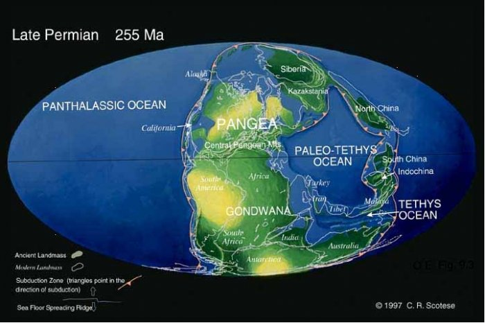 Палеозойский этап развития