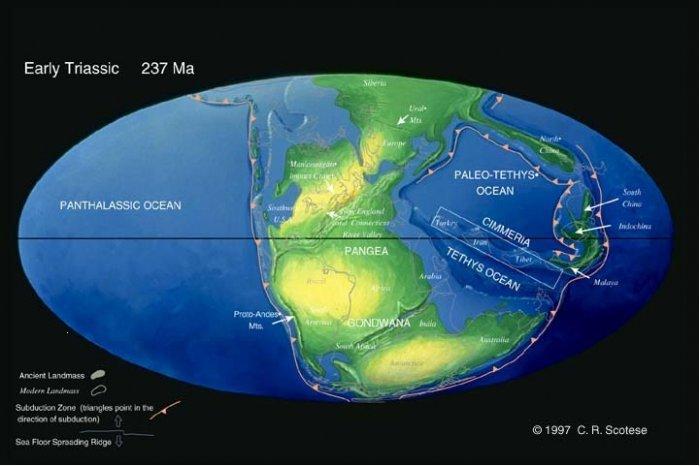 Мезозойский этап развития