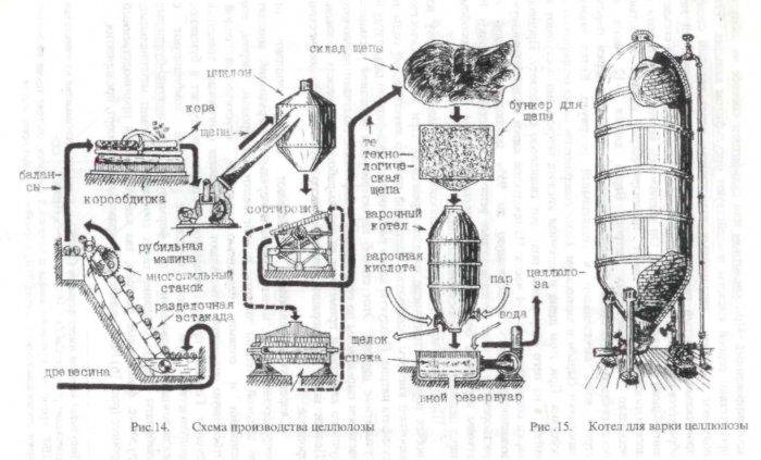 Производство целлюлозы