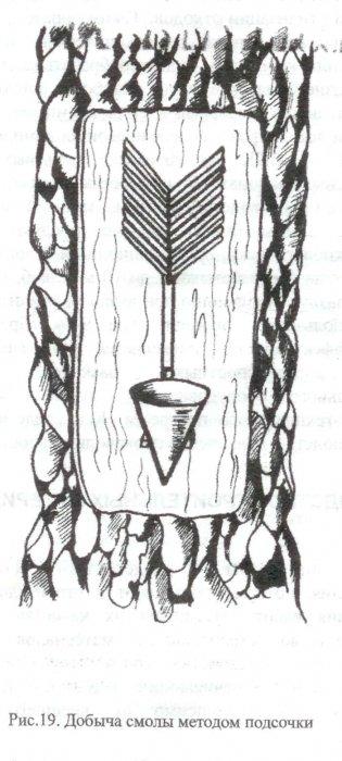 Гидролиз древесины. Лесохимия