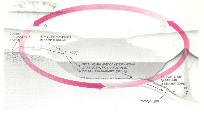 Карбонатно-силикатный цикл