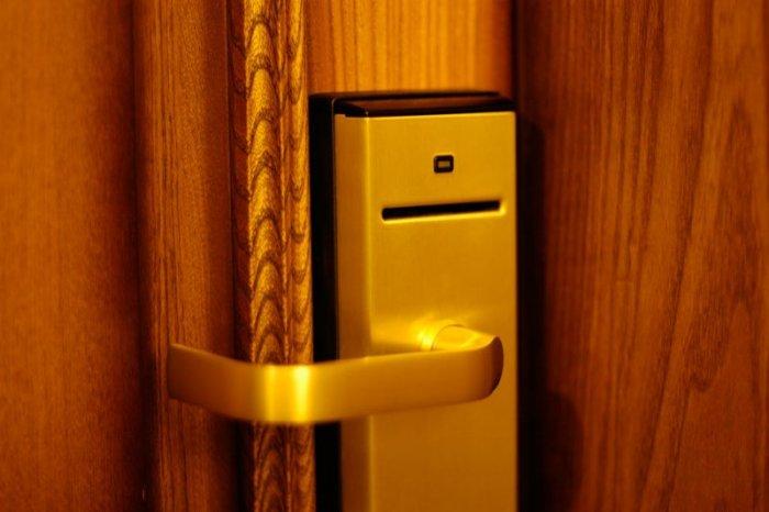 Влияние мирового финансового кризиса на эффективность деятельности гостинич ...