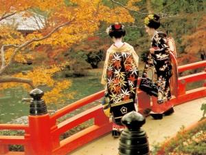 Осень в Японии: берем электронный переводчик и отправляемся на «момидзи»